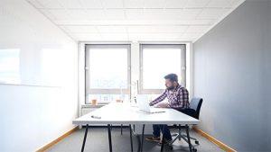 Joe-Tree-Startups-Job-Autonomy-Work-Flexibility